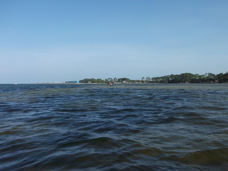 Blog florida gulf coast fishing for Florida gulf coast fishing